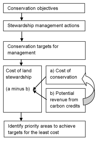 The framework developed for prioritising stewardship payments for improved land management while accounting for potential carbon revenue.